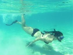 Diving & Snorkelling