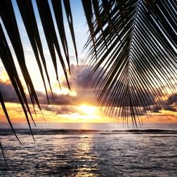 Rarotongan Sunsets