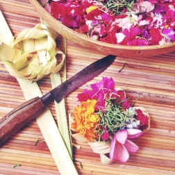 Learn about the culture of Bali, by grabbing a private guide! (We learnt to make offerings)