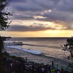 Surf Surf Surf!