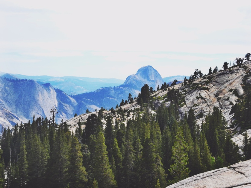 From Vegas to Yosemite – A breath of fresh air!