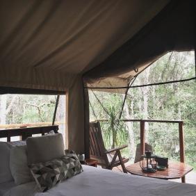 paperbark camp tent 2